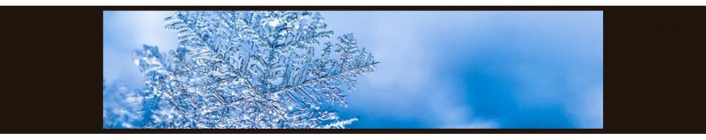 Congelatori Verticali Acciaio Inox. Freezer Per alimenti