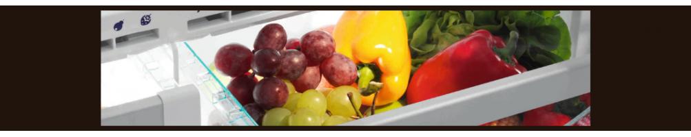 Frigoriferi Professionali per la conservazione di Alimenti