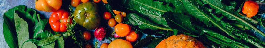 Frigoriferi in Lamiera Positivi - TopRistorazione Food Equipment