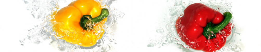 Lavelli INOX Armadiati. Vasca doppia o Singola